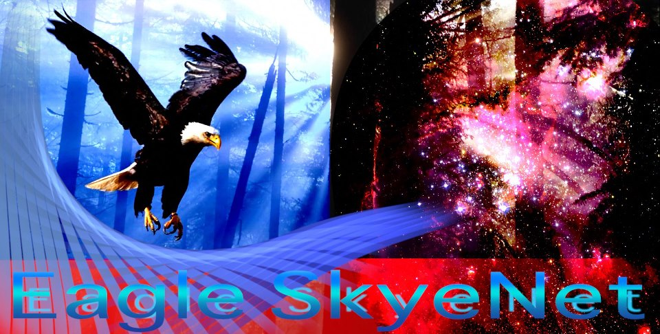 Eagle SkyeNet